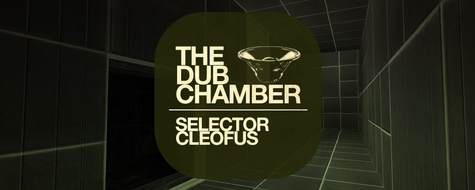 The Dub Chamber