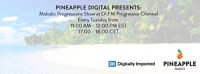 Pineapple Digital Presents